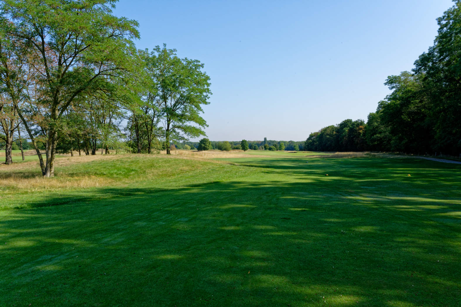 Alsace Golf Links - 5