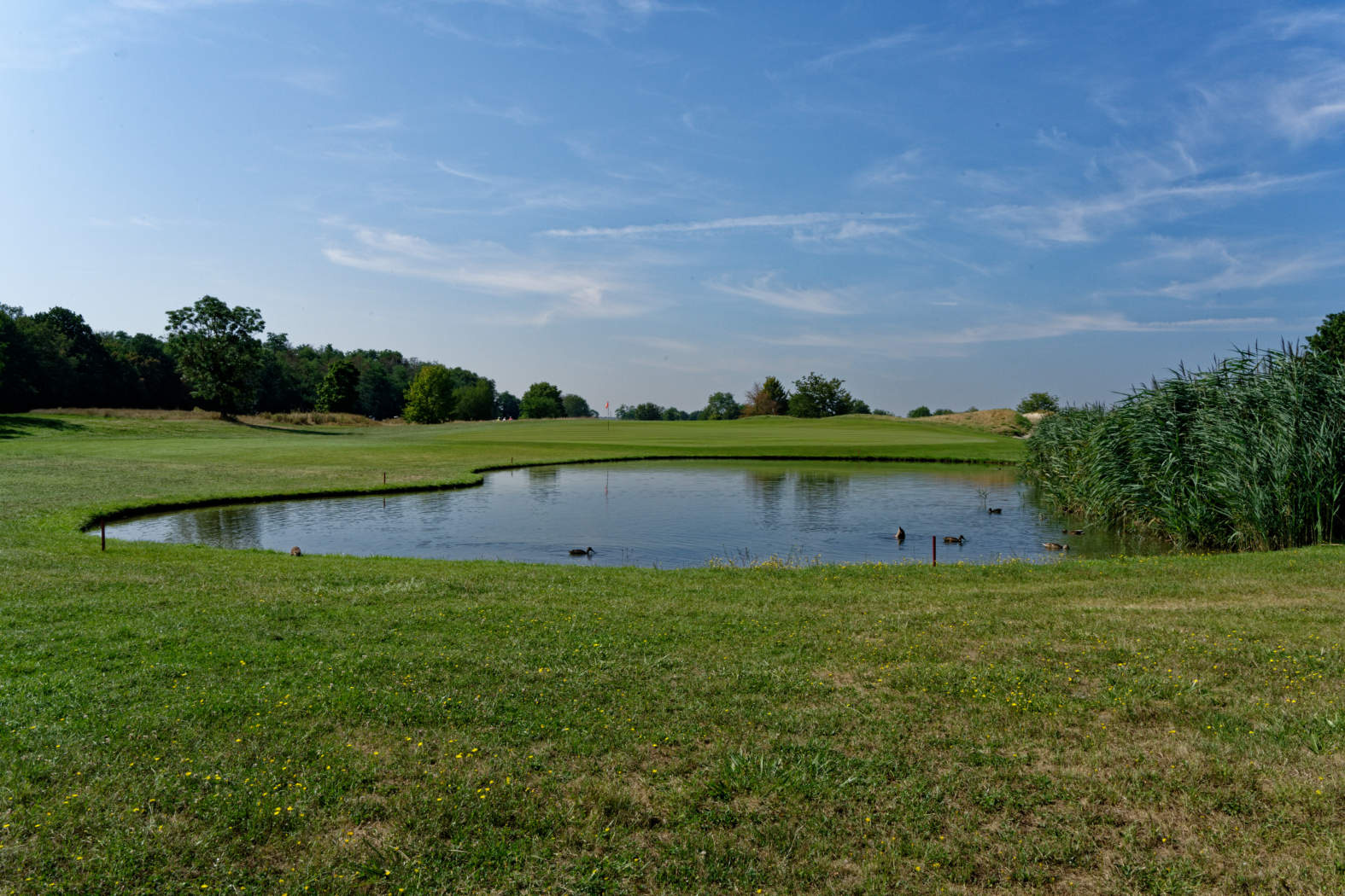 Alsace Golf Links - 17